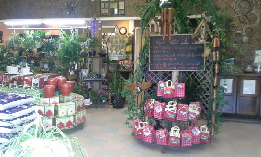 Hannas Seeds Garden Centre